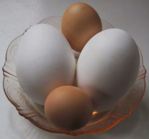 Goose Eggs for Healthy Fats